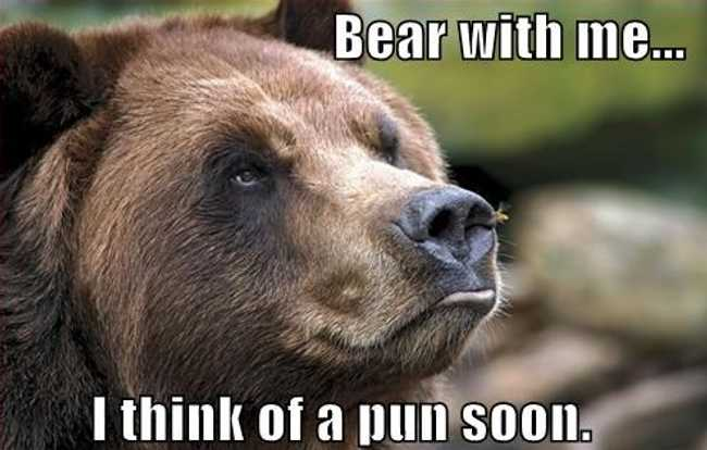Unbearably Funny Bear Puns