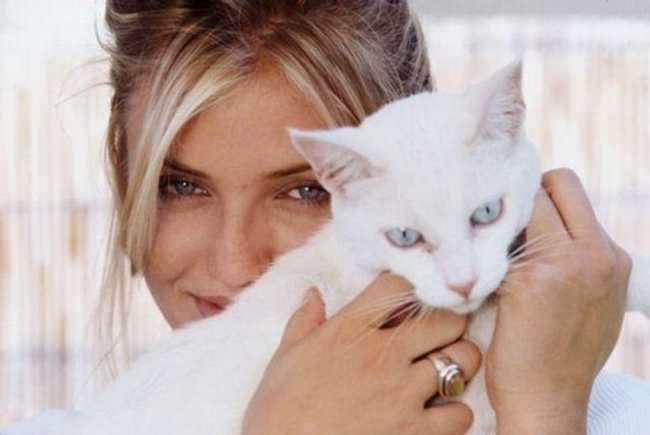 30+ Celebrities Who Are Cat People